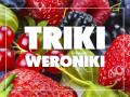 Triki Weroniki: Jak pozbyć sięmuszek owocówek?