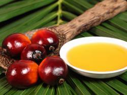 4 największe mity na temat oleju palmowego