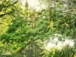 Artystyczna Fotografia Ślubna Patryk Długajczyk