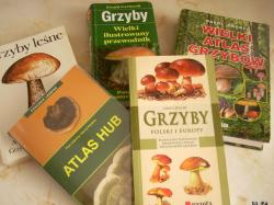 Atlasy grzybów