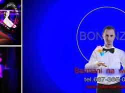 B A R M A N - na  wesele  /Drink -bar /drinki wino na wesele