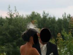 Bajeczna suknia ślubna RAFAELLA