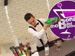 BARMAN NA WESELE / BAR /Drinki na Wesele