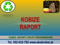 Bilans , Kobize, protokół Kobize, cena, 502-032-782, Waroszawa, Wrocław, Katowice, Poznań, Kraków, Gdańsk,