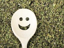 Czy czystek odchudza? Poznaj niezwykłe właściwości tego zioła!