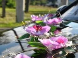 dekoracja samochodu- różowy storczyk