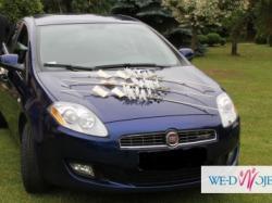 Dekoracja samochodu - storczyki
