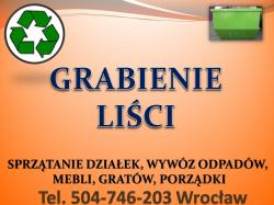 Grabienie liści, cena tel 504-746-203, wywożenie liści, Wrocław