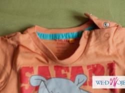 koszulki z nosorożcem 5 10 15 rozmiar 80