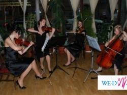 Kwartet smyczkowy VIVO z Krakowa. Profesjonalna oprawa muzyczna.