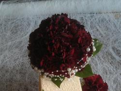 """Kwiaciarnia """"Agawa"""" - Zamość"""