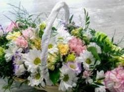 Kwiaciarnia Lawendowa Teresa Pytlos