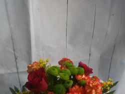 Kwiaciarnia Maja