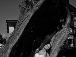la sposa madeira 2009, okazja
