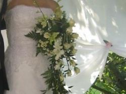 orginalna Suknia z kolekcji PRONOVIAS model DAKOTA