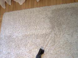 Pranie dywanów kielce