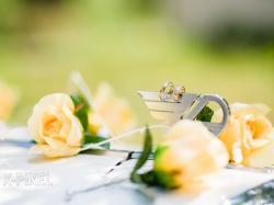 Profesjonalna Fotografia Ślubna - Professional Wedding Photo