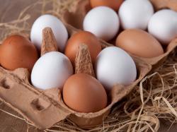 Skorupki jajek ratunkiem dla chorych na osteoporozę?