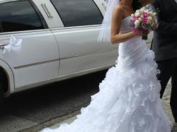 sprzedam suknie Aqua - Elianna Moore 2010