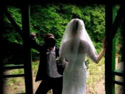 Sprzedam suknie ślubną Demetrios 1341 kolekcja 2008 rozmiar 36/38