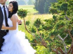 sprzedam suknię ślubną roz.36-38 Łabędź