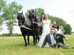 Stylowa kareta/bryczka do ślubu