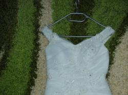 Suknia 2011 kolekcja