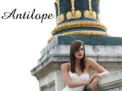 Suknia ANTILOPE CYMBELINE (kolekcja 2007) 1200 zł - do negocjacji