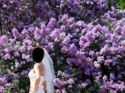 SUKNIA ASHFORD FIRMY BLUE BY ENZOANI MODEL 2008 PRZEPIĘKNA