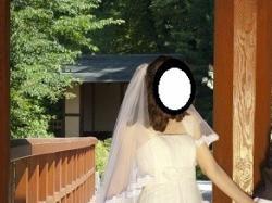 suknia ślubna AGNES model 10483 color ecru
