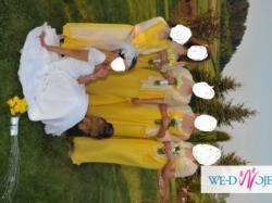 suknia ślubna + suknie drużek