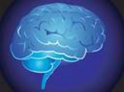 Synchronizacja półkul mózgowych