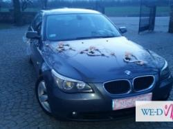 Zawiozę do ślub BMW E60 Łuków