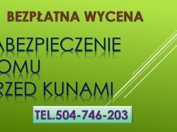 Zwalczanie kuny,tel. 504-746-203, zabezpieczenie domu, cena, ochrona przed kunami, cennik, Wrocław, jak pozbyć się kuny ?