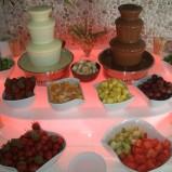 Fontanny czekoladowe i alkoholowe - atrakcje weselne woj.św.
