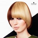 Modny paź - kolorowe włosy
