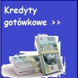 Pożyczki firmy pozabankowe netPozyczka24.pl
