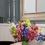 Wiosenne aranżacje z hiacyntem - zdjęcie