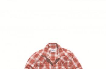 Koszule męskie Levis jesień/zima 2011/2012