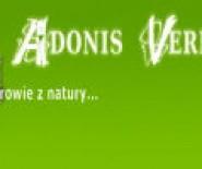 Adonis Vernalis
