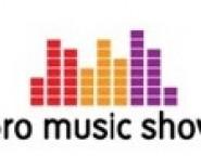 Agencja DJ/Wodzirej na wesela - PRO MUSIC SHOW