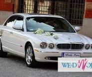 Auto do ślubu - BIAŁY JAGUAR XJ8