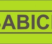 BABICH FASHION DESIGNER