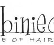 Babiniec House Of Hair