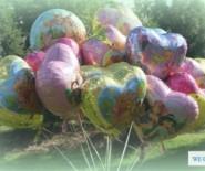 balony hel