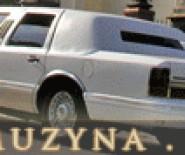 Białe Limuzyny & Retro - Wynajem aut do ślubu