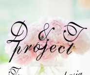 D&T project