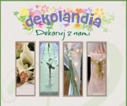Dekolandia - dekoracje ślubne