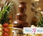 Dekoracje fontanna czekoladowa