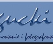 DWBogucki